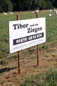 Schild Tibor Und Die Ziegen